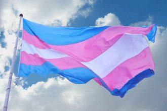 bandiera transgender