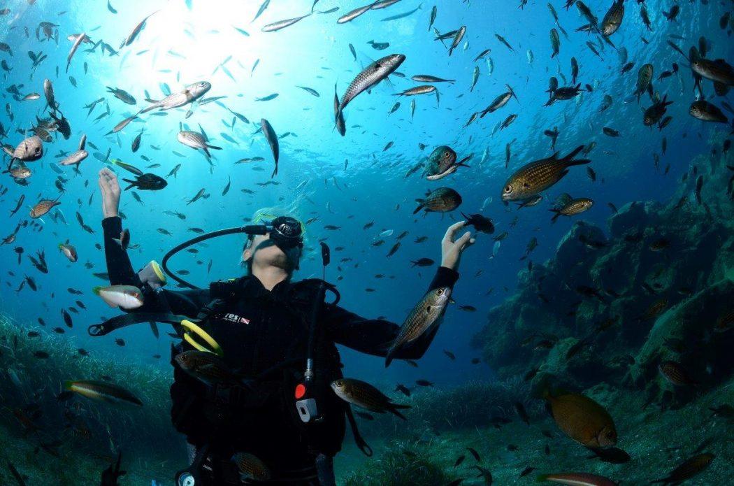 Carvico_8 giugno_@PYCousteau_Cousteau Divers (2)