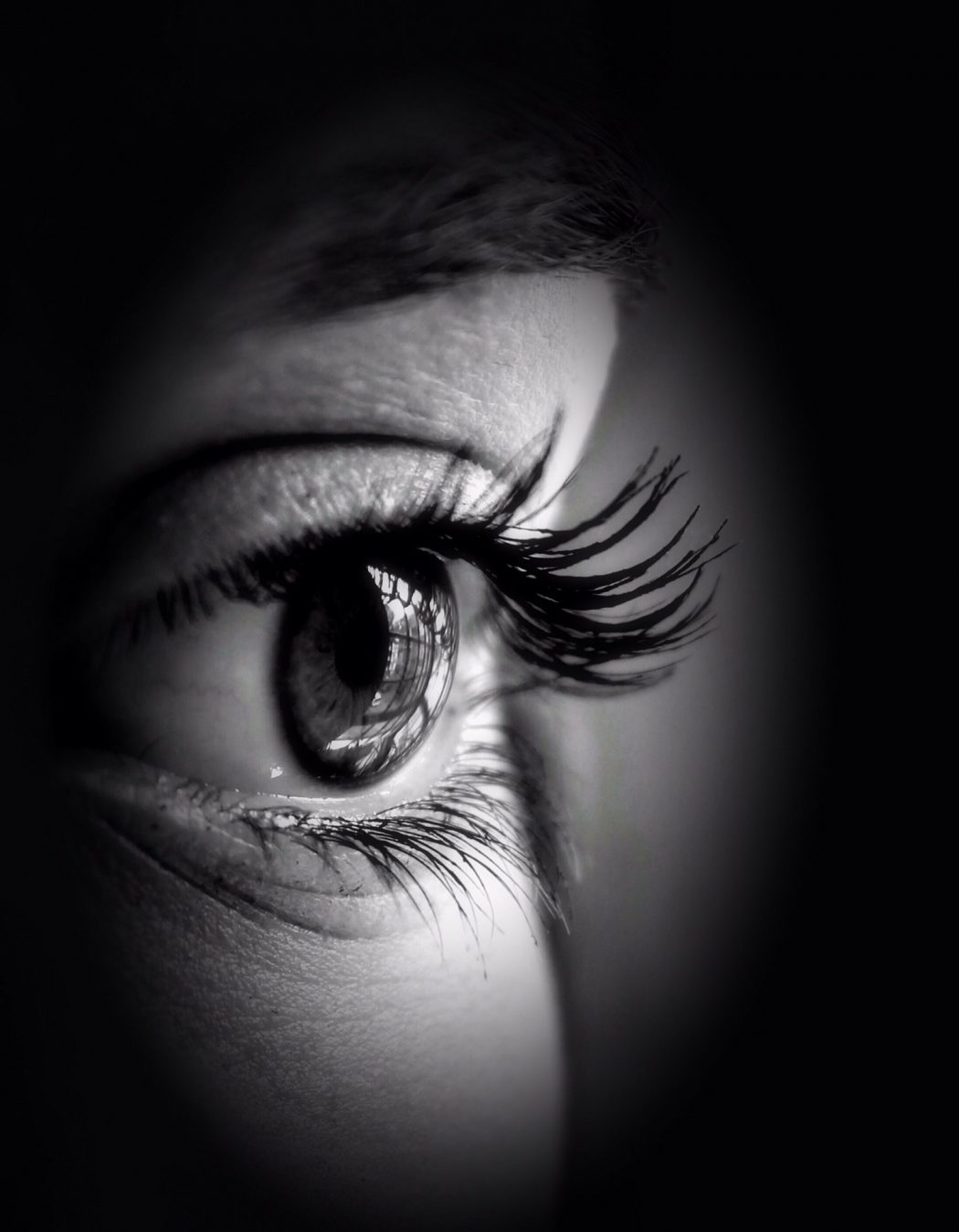 eye-240843_1920