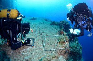 Carvico_8 giugno_@PYCousteau_Cousteau Divers (3)